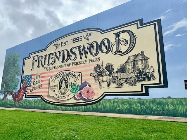 friendswood1